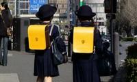 Découverte Japon, Japon, l'école