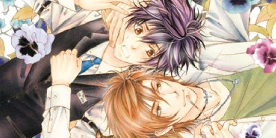 Critique Manga, Manga, Taifu Comics, Yaoi, Mad Love,